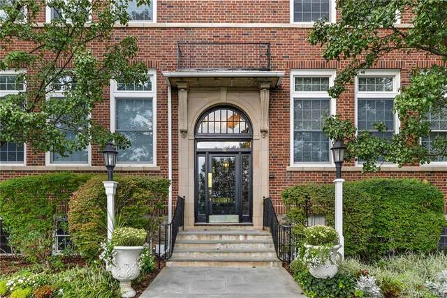20 Whippoorwill Road E 1D, Armonk, NY 10504 (MLS #H6123511) :: Mark Seiden Real Estate Team