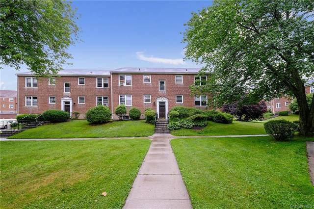 260 Church Street 5B3, White Plains, NY 10603 (MLS #H6123558) :: Cronin & Company Real Estate
