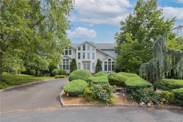 49 King Arthur Court, New City, NY 10956 (MLS #H6123593) :: Carollo Real Estate