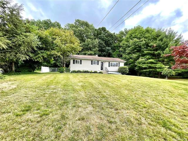 22 Buttermilk Drive, Poughkeepsie, NY 12601 (MLS #H6123653) :: Barbara Carter Team