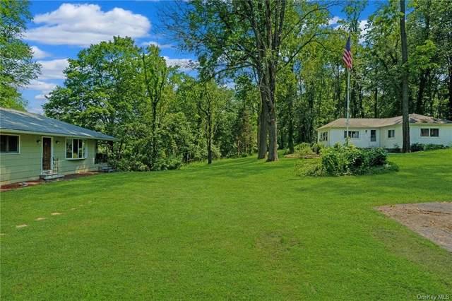 114 Dorn Road, Lagrangeville, NY 12540 (MLS #H6123710) :: Barbara Carter Team