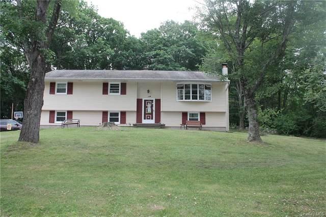 2 Rock Cut Circle, Newburgh, NY 12550 (MLS #H6123714) :: Carollo Real Estate