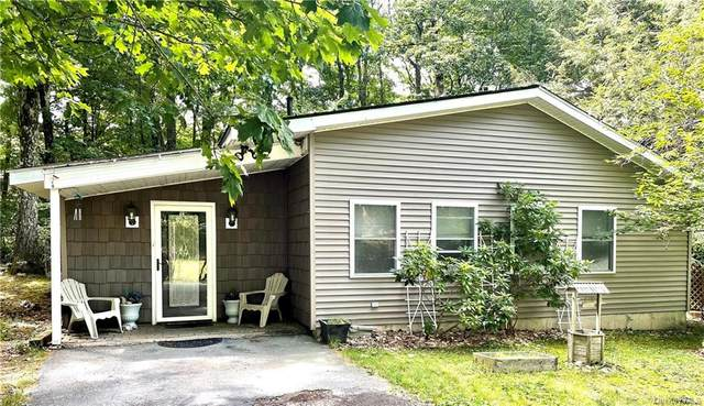 87 Pebble Path, Rock Hill, NY 12775 (MLS #H6123724) :: Kendall Group Real Estate | Keller Williams