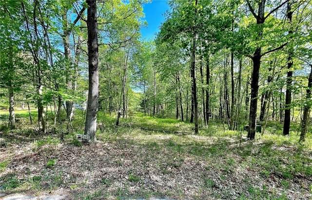 Buck Hill Road, Wurtsboro, NY 12790 (MLS #H6123728) :: Cronin & Company Real Estate