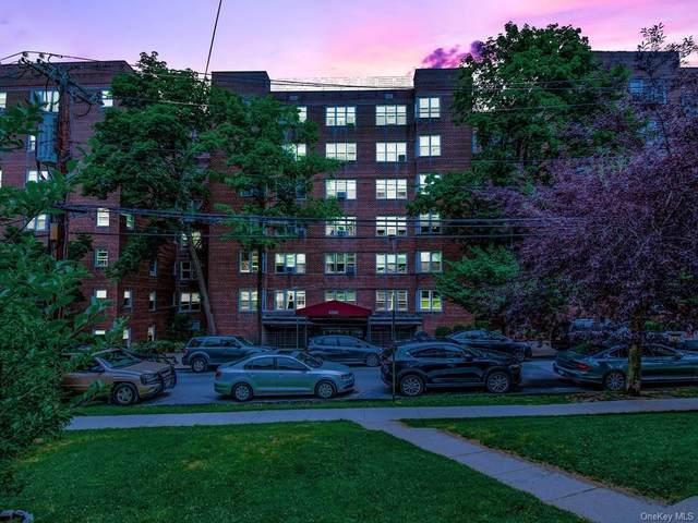 4380 Vireo Avenue 4B, Bronx, NY 10470 (MLS #H6123733) :: Carollo Real Estate