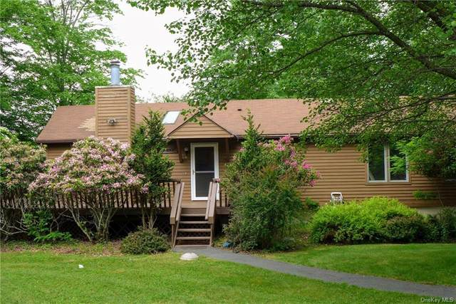 97 Lake View Drive, Swan Lake, NY 12783 (MLS #H6123753) :: Corcoran Baer & McIntosh