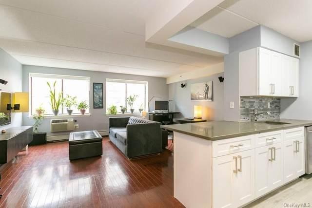 342 E 119th Street 3A, New York, NY 10035 (MLS #H6123758) :: Carollo Real Estate