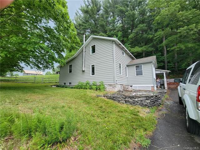 480 Route 7, Pine Plains, NY 12567 (MLS #H6123776) :: Goldstar Premier Properties