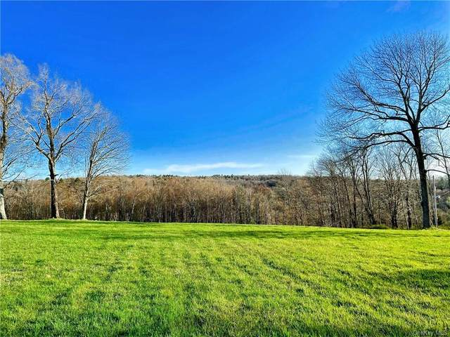 Jaketown Road, Bethel, NY 12720 (MLS #H6123781) :: Carollo Real Estate