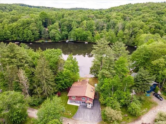 23 Indian Lake Road, Ferndale, NY 12734 (MLS #H6123788) :: Mark Boyland Real Estate Team