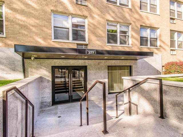 377 Westchester Avenue 3 E, Rye Brook, NY 10573 (MLS #H6123797) :: RE/MAX RoNIN