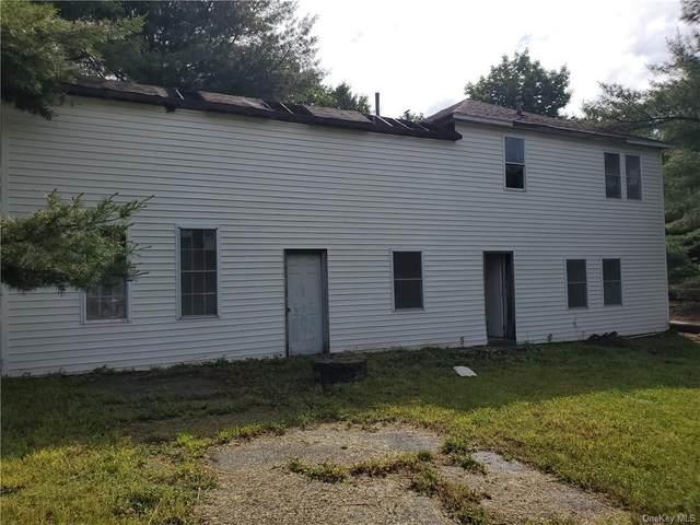 1098 Wurtsboro Mountain Road, Wurtsboro, NY 12790 (MLS #H6123800) :: Mark Boyland Real Estate Team