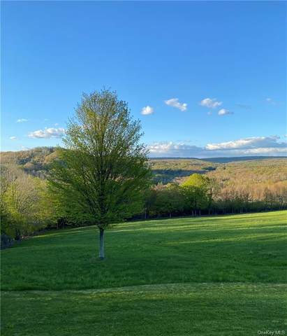 State Route 52/East Hill, Jeffersonville, NY 12748 (MLS #H6123906) :: Carollo Real Estate
