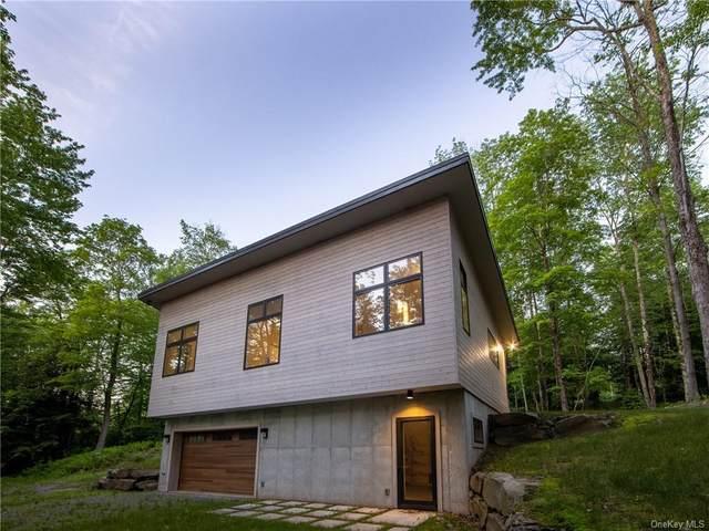 38 Kenoza Creek Crossing, Callicoon, NY 12723 (MLS #H6123951) :: Mark Boyland Real Estate Team