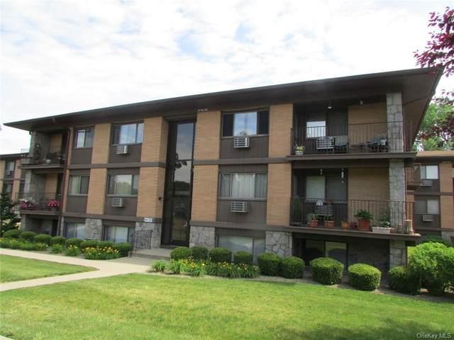 10 Oakwood Terrace #74, New Windsor, NY 12553 (MLS #H6124010) :: Nicole Burke, MBA | Charles Rutenberg Realty