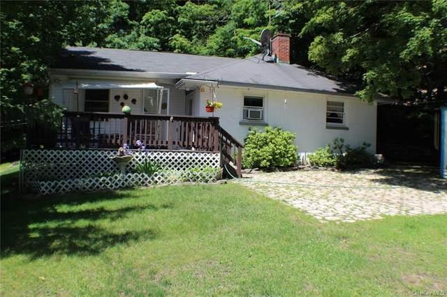 184 Twinshaven Road, Napanoch, NY 12458 (MLS #H6124065) :: Laurie Savino Realtor