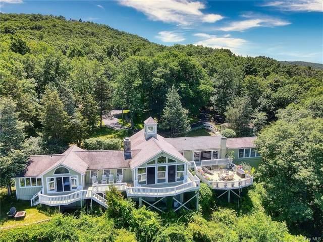 19 Xavier Acres, Highland Mills, NY 10930 (MLS #H6124068) :: Carollo Real Estate