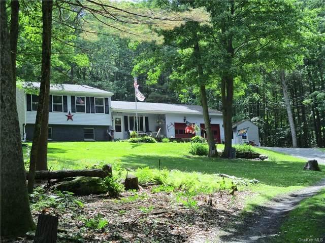 719 Peenpack Trail, Sparrowbush, NY 12780 (MLS #H6124140) :: Carollo Real Estate