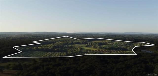 1752 Route 44/55, Modena, NY 12548 (MLS #H6124149) :: Carollo Real Estate