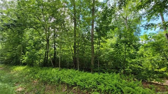 Lot #3 Nys 97 & Humpry Tr34 Road, Narrowsburg, NY 12764 (MLS #H6124166) :: Carollo Real Estate