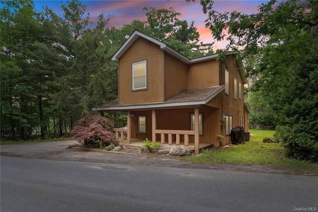 22 N Shore Drive, Wurtsboro, NY 12790 (MLS #H6124235) :: Mark Boyland Real Estate Team