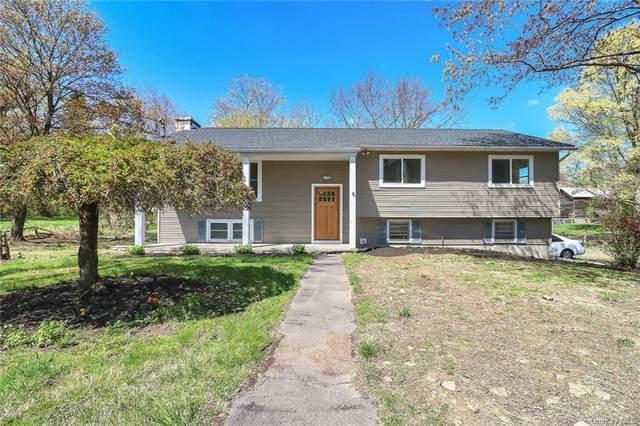 2107 State Route 32, Modena, NY 12548 (MLS #H6124281) :: Carollo Real Estate