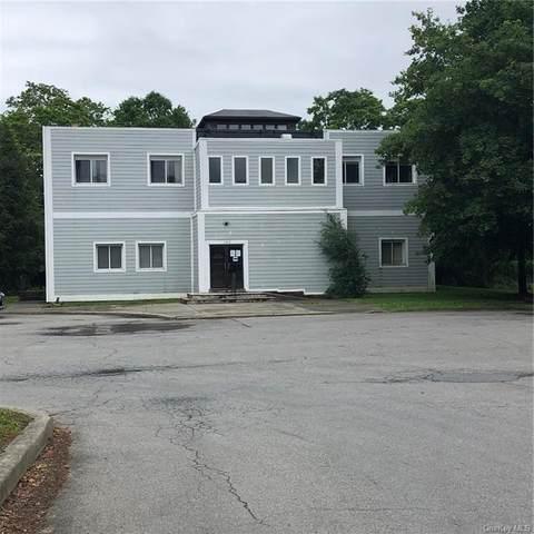 160 Salt Point Turnpike, Poughkeepsie, NY 12603 (MLS #H6124283) :: Barbara Carter Team