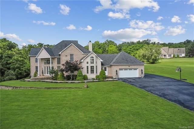 1 Lake View Drive, Goshen, NY 10924 (MLS #H6124310) :: RE/MAX RoNIN