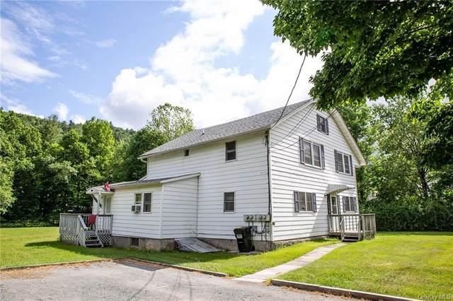 18 Creamery Road, Hankins, NY 12741 (MLS #H6124370) :: Howard Hanna Rand Realty