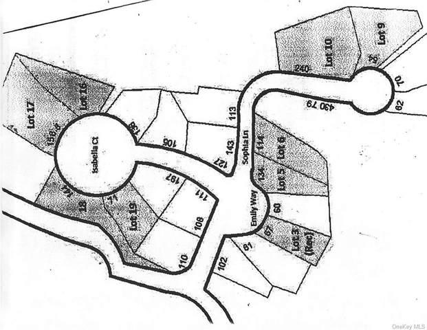 46 Sophia Lane, Brewster, NY 10509 (MLS #H6124411) :: Carollo Real Estate