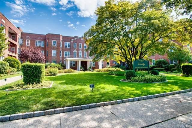101 Old Mamaroneck Road 1C6, White Plains, NY 10605 (MLS #H6124460) :: Carollo Real Estate