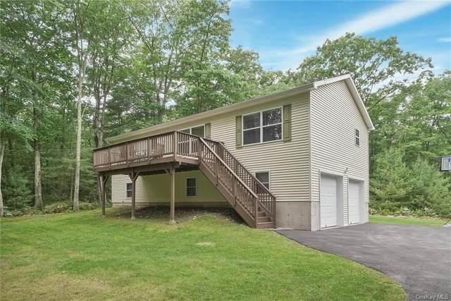 51 Mcclay Road, Wurtsboro, NY 12790 (MLS #H6124529) :: Carollo Real Estate