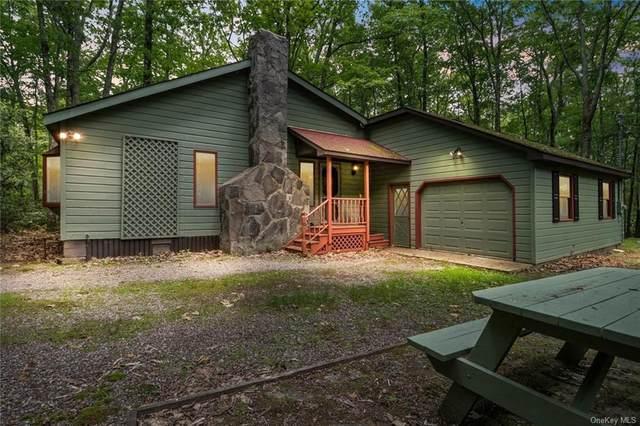 3 Hughes Lane, Wurtsboro, NY 12790 (MLS #H6124538) :: Kendall Group Real Estate | Keller Williams