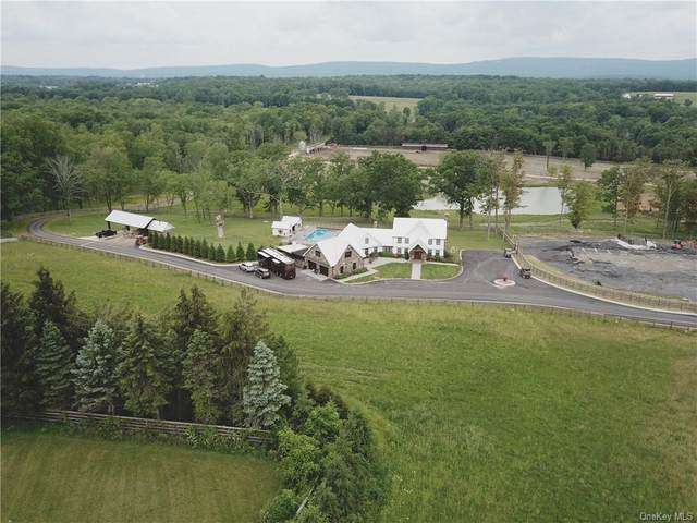 15 County Route 48, Thompson Ridge, NY 10985 (MLS #H6124588) :: Signature Premier Properties