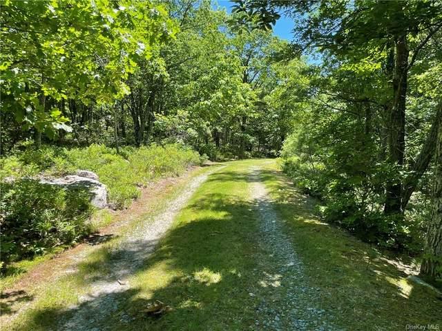 Treetops Trail, Wurtsboro, NY 12790 (MLS #H6124596) :: Mark Boyland Real Estate Team