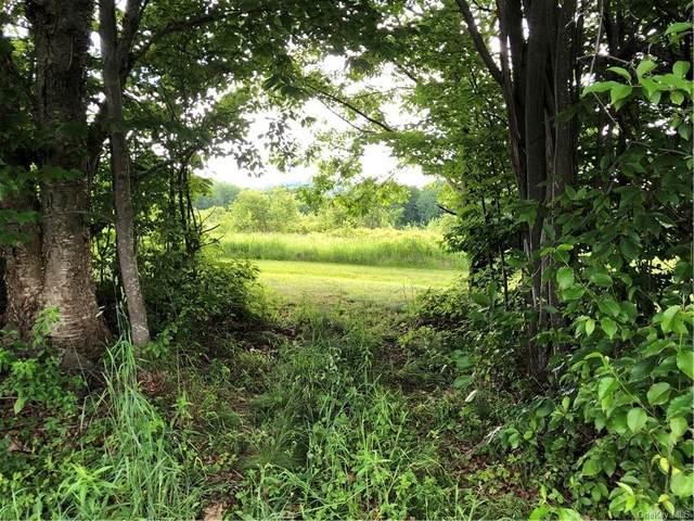 Steam Mill Road, Other, NY 13804 (MLS #H6124760) :: Howard Hanna | Rand Realty