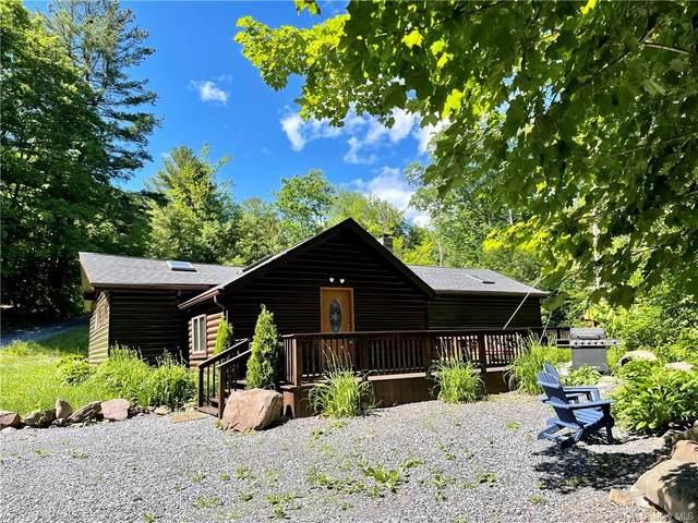 15 Timber Lake Road, Shandaken, NY 12480 (MLS #H6124762) :: Barbara Carter Team