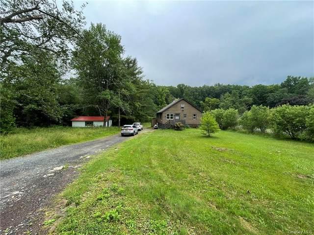 46 Lime Kiln Road, Port Jervis, NY 12771 (MLS #H6124957) :: Carollo Real Estate