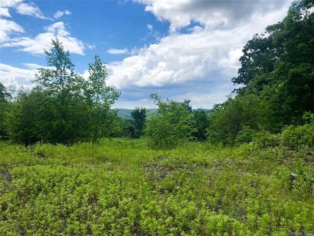 31 Ridgecrest Road, Lake Peekskill, NY 10537 (MLS #H6124959) :: Mark Seiden Real Estate Team