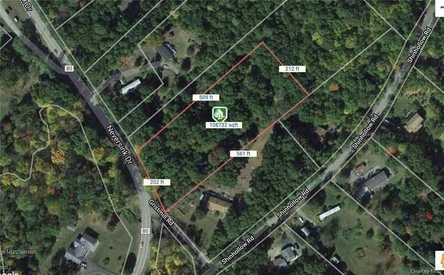 264 Neversink Drive, Port Jervis, NY 12771 (MLS #H6124967) :: Corcoran Baer & McIntosh
