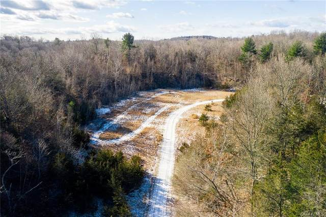 641 State Route 82, Call Listing Agent, NY 12523 (MLS #H6124990) :: Carollo Real Estate