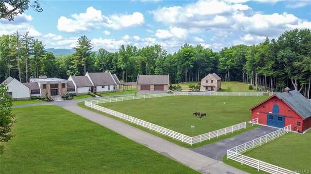 1955 Lucas Turnpike, High Falls, NY 12440 (MLS #H6125004) :: Carollo Real Estate