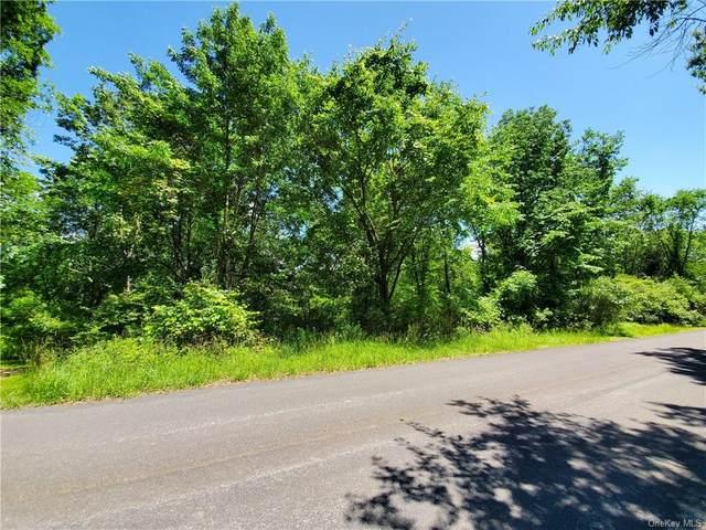 Knolls Road, Wallkill, NY 12589 (MLS #H6125009) :: Carollo Real Estate
