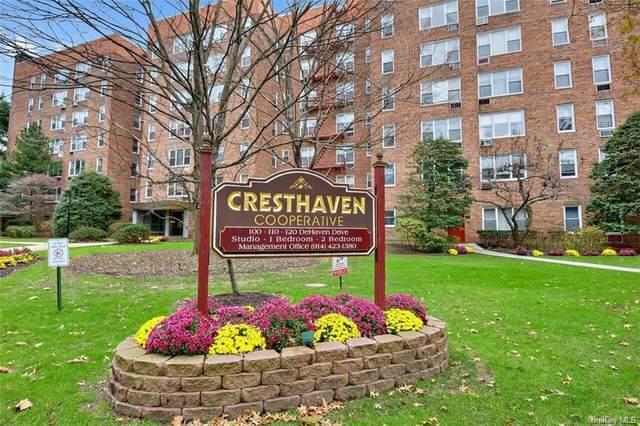 110 Dehaven Drive #523, Yonkers, NY 10703 (MLS #H6125057) :: Shalini Schetty Team