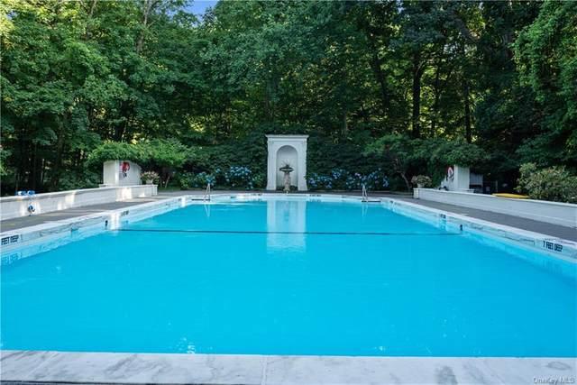 32 Beechwood Way, Briarcliff Manor, NY 10510 (MLS #H6125138) :: RE/MAX RoNIN