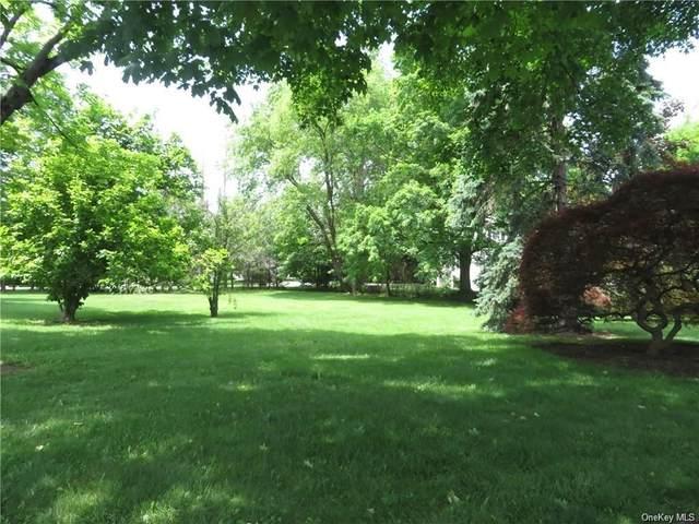20 Laurel Road, White Plains, NY 10605 (MLS #H6125153) :: Signature Premier Properties