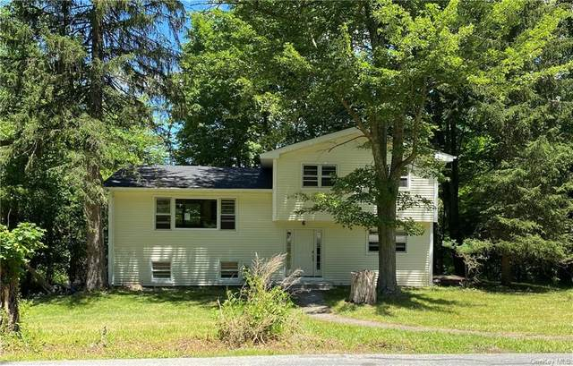 76 Hawxhurst Road, Monroe, NY 10950 (MLS #H6125184) :: Kendall Group Real Estate | Keller Williams