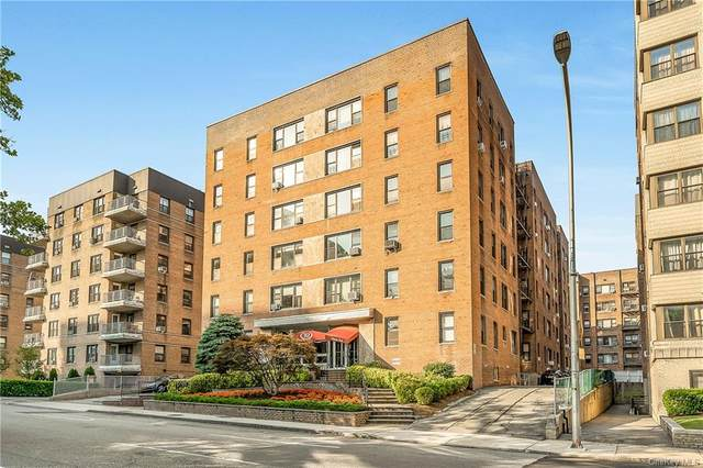 10 N Broadway 6K, White Plains, NY 10601 (MLS #H6125297) :: Howard Hanna | Rand Realty