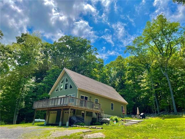 696 Greenville Turnpike, Middletown, NY 10940 (MLS #H6125559) :: Cronin & Company Real Estate