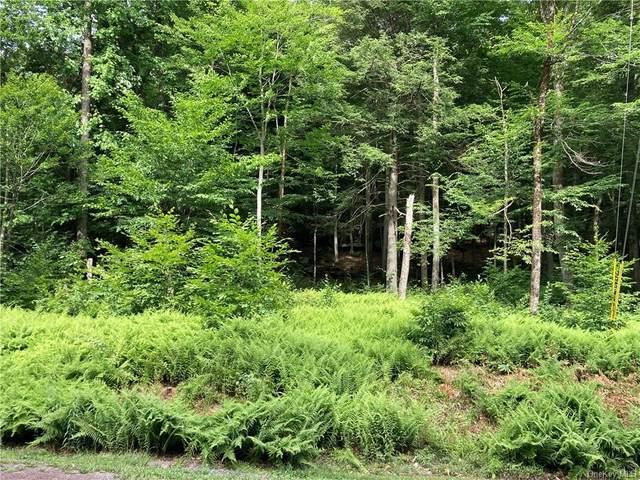 Lot 31 Kenoza Trail, Kenoza Lake, NY 12750 (MLS #H6125602) :: Goldstar Premier Properties